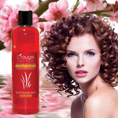 L'rouge Kuru / Boyalı / Permalı Yıpranmış Saçlar İçin Acil Bakım Şampuanı